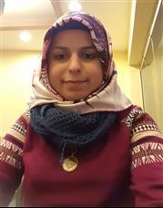 Berna İ.-Zonguldak Karaelmas Üniversitesi