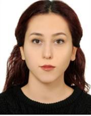 Pelin E.-İstanbul Teknik Üniversitesi